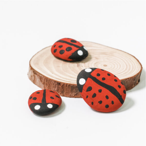 Ladybird rocks eco party bags