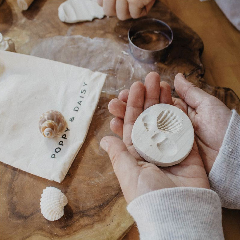 Clay Fossils